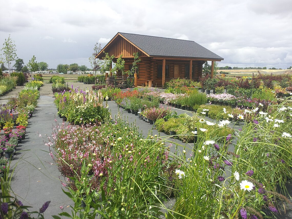 Ace Landscaping Nursery: Walla Walla Location.